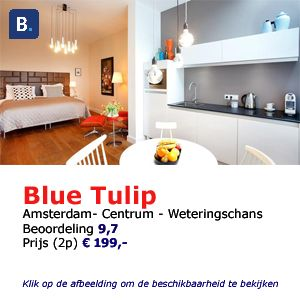 blue tulip bed and breakfast amsterdam